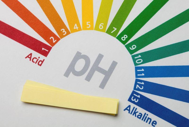 Độ pH trong cơ thể là chỉ số quan trọng giúp bạn hiểu rõ các vấn đề của cơ thể