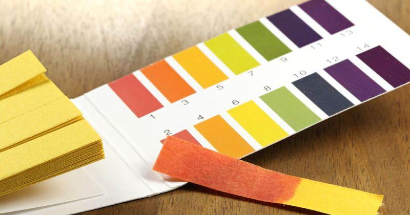 Dựa vào thang đo độ pH để giúp xác định nước mang tính kiềm