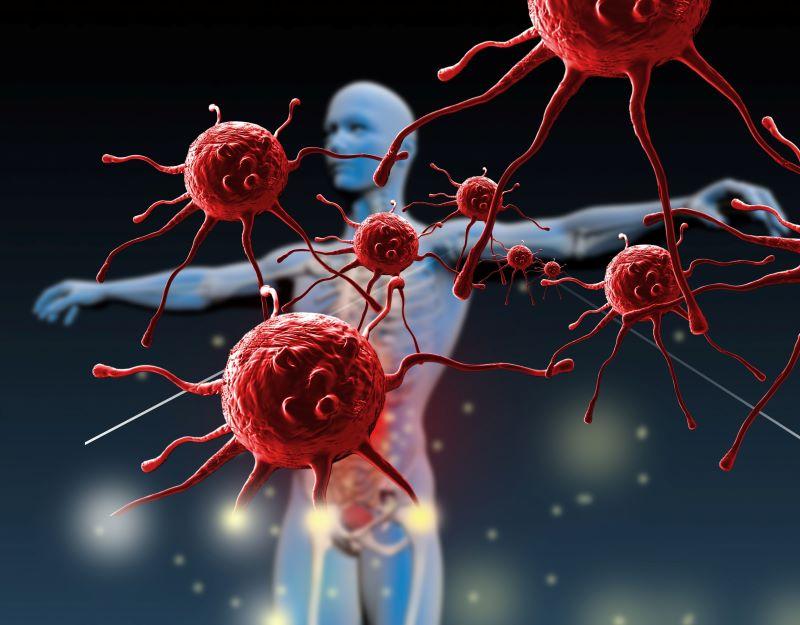 Bổ sung chất chống oxy hóa thường xuyên sẽ giúp cơ thể chống được các tác nhân gây hại