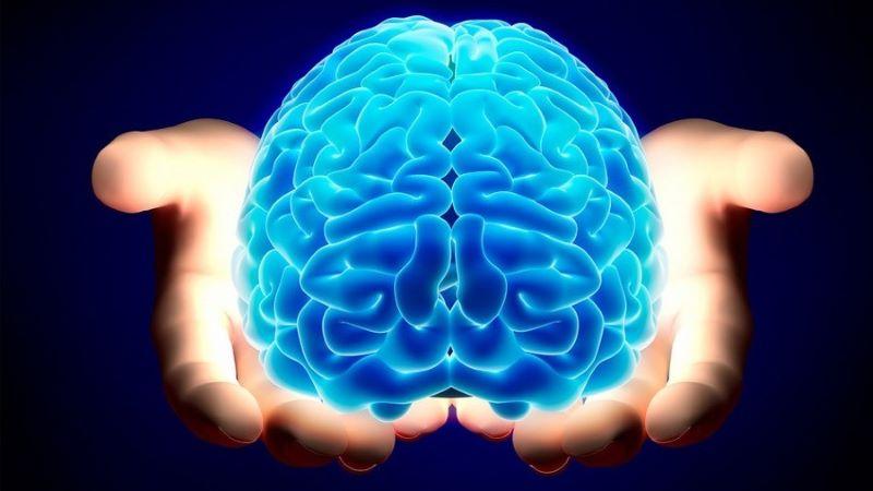 Não bộ là bộ phận dễ bị tấn công bởi các gốc tự do
