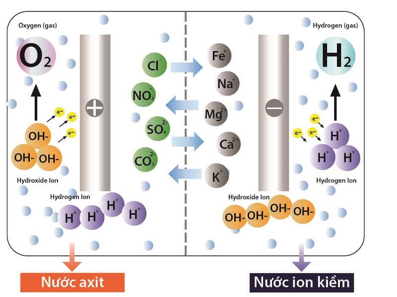 Lựa chọn chỉ số hydro đạt mức tối thiểu khoảng 1400 ppb