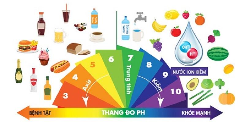 Khi cơ thể tiêu thụ thức ăn có tính kiềm sẽ làm axit dư thừa được trung hò